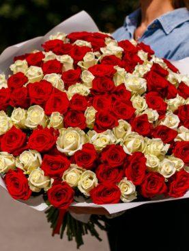 Букет из 101 белой и красной розы 40 см (РФ)