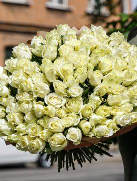 Букет из 101 белой розы 50 см (Кения)