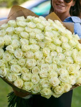 Букет из 101 белой розы 70 см (Эквадор)
