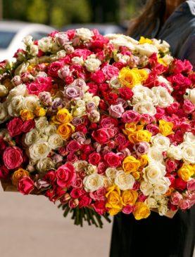 Букет из 101 кустовой розы микс 50 см (Кения)