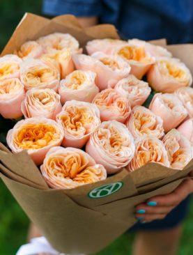 Букет из 25 пионовидных роз Вувузела Пич 50 см