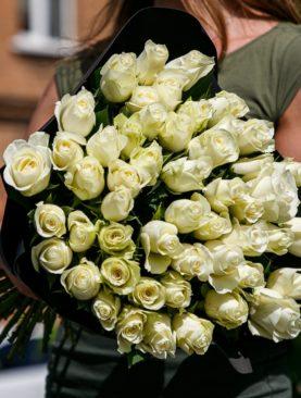 Букет из 51 белой розы 50 см (Кения)