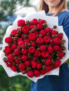 Букет из 51 пионовидной кустовой розы Ред Пиано 50 см