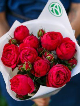 Букет из 9 пионовидных кустовых роз Ред Пиано 50 см