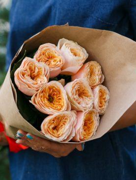 Букет из 9 пионовидных роз Вувузела Пич 50 см