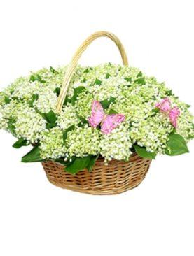 Цветы в корзине Майский привет