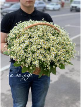 Цветы в корзине Садовая хозяйка