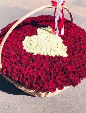 Корзина из 501 красной и белой розы (Кения)