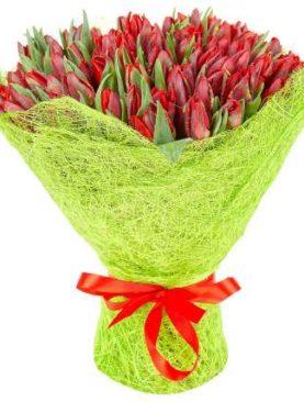 Тюльпаны красные 75 шт