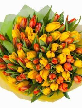 Тюльпаны микс 75 шт