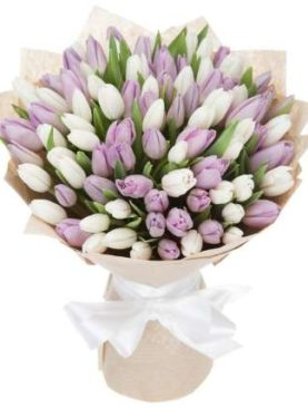Тюльпаны Нежность 101 шт