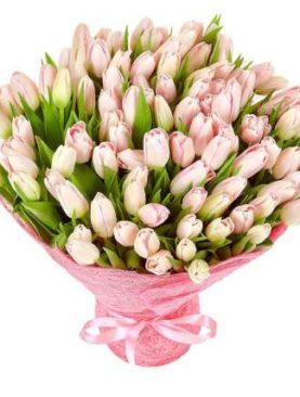 Тюльпаны розовые 75 шт