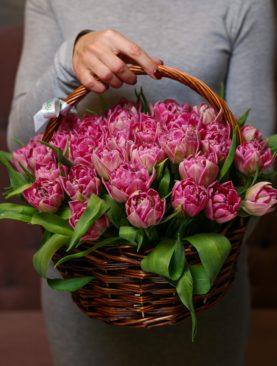37 розовых пионовидных тюльпанов в корзине